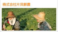 株式会社片貝鮮農